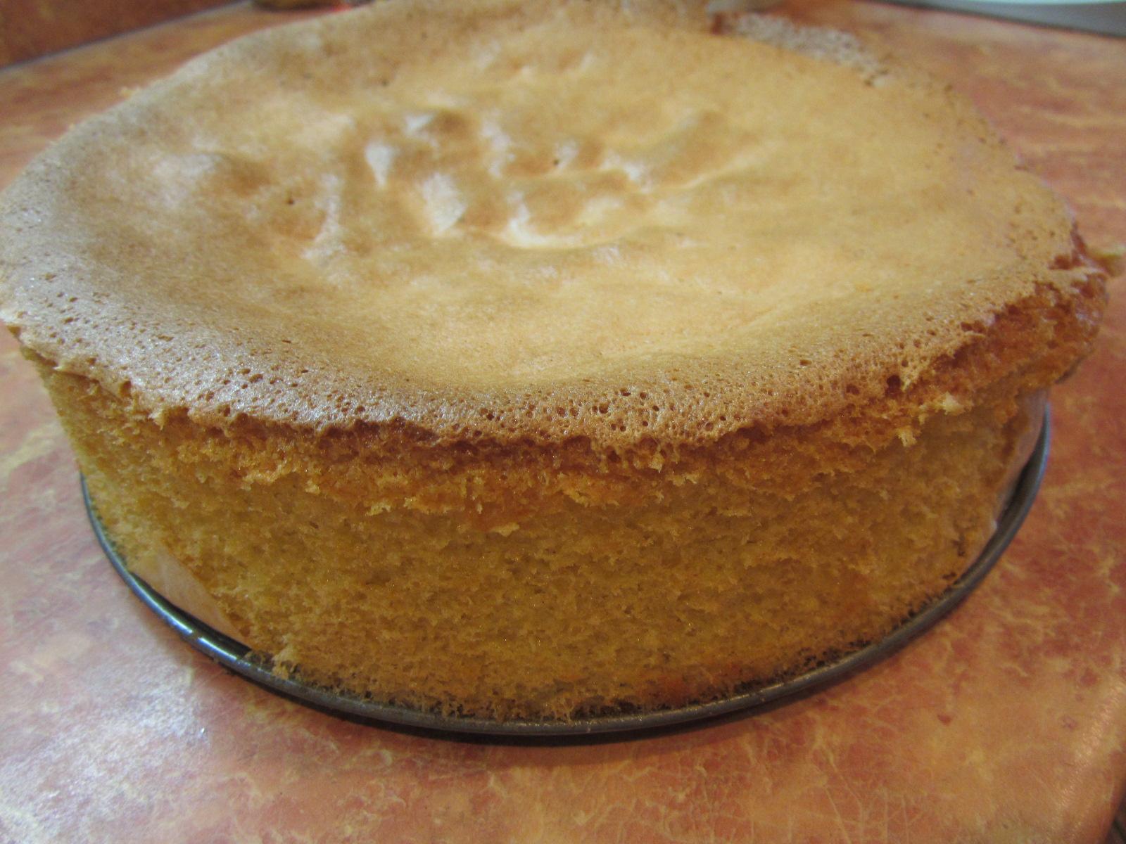 Бисквитные торты рецепты простые в домашних условиях в духовке